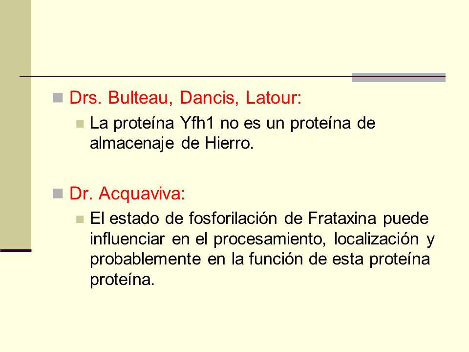 Drs. Bulteau, Dancis, Latour: La proteína Yfh1 no es un proteína de almacenaje de Hierro.