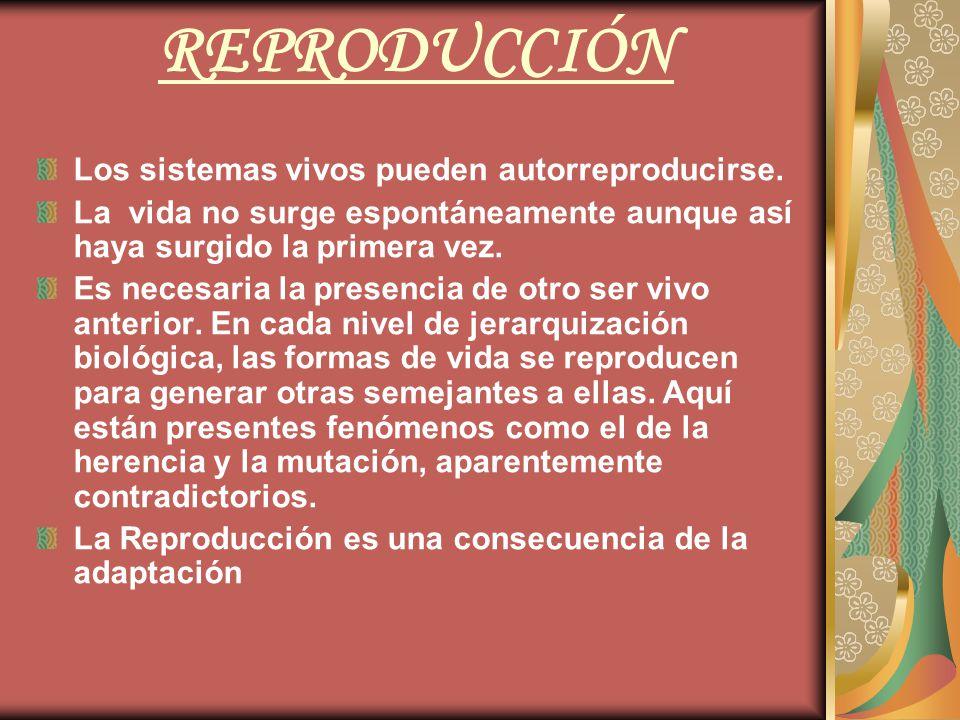 REPRODUCCIÓN Los sistemas vivos pueden autorreproducirse.