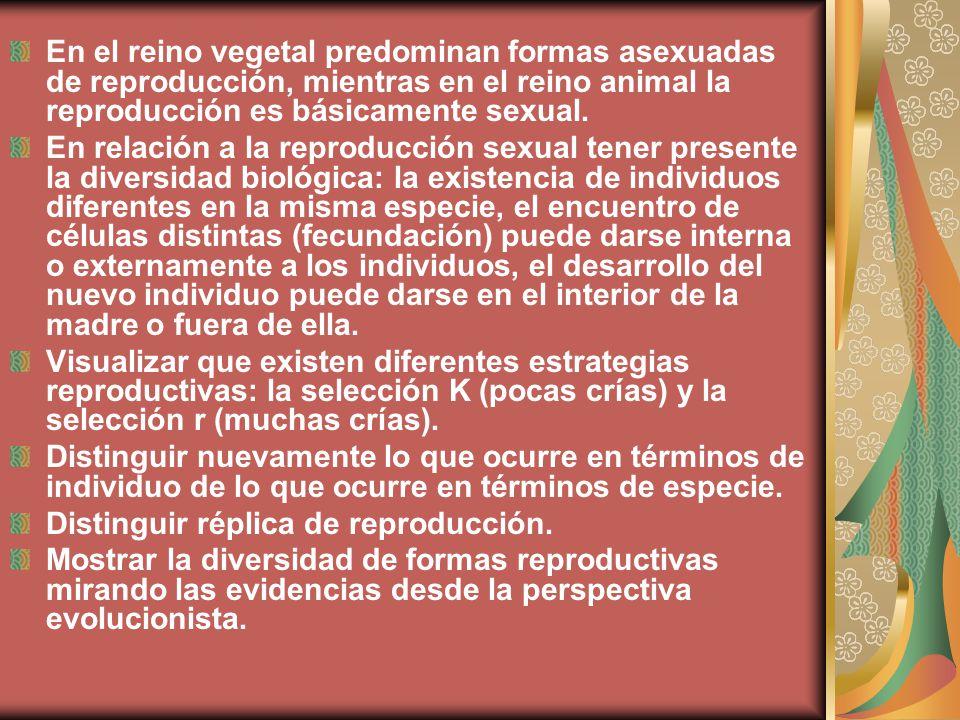 En el reino vegetal predominan formas asexuadas de reproducción, mientras en el reino animal la reproducción es básicamente sexual.