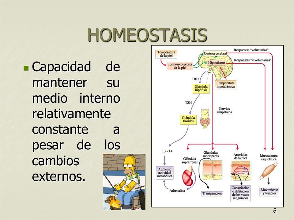 5 HOMEOSTASIS Capacidad de mantener su medio interno relativamente constante a pesar de los cambios externos.