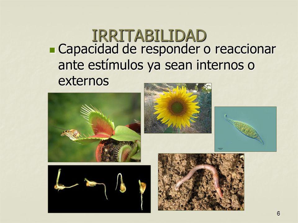 6 IRRITABILIDAD Capacidad de responder o reaccionar ante estímulos ya sean internos o externos Capacidad de responder o reaccionar ante estímulos ya sean internos o externos
