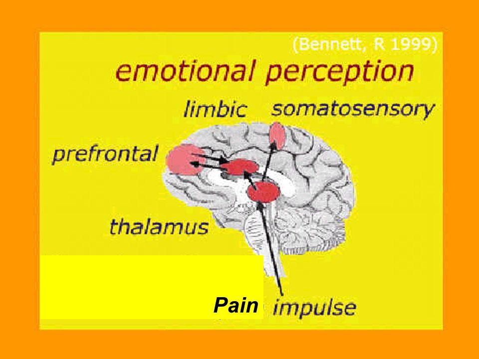 Autor: Dra. Lunic Pain