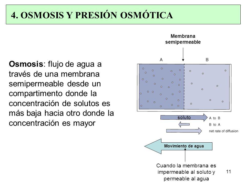 Osmosis: flujo de agua a través de una membrana semipermeable desde un compartimento donde la concentración de solutos es más baja hacia otro donde la concentración es mayor 4.