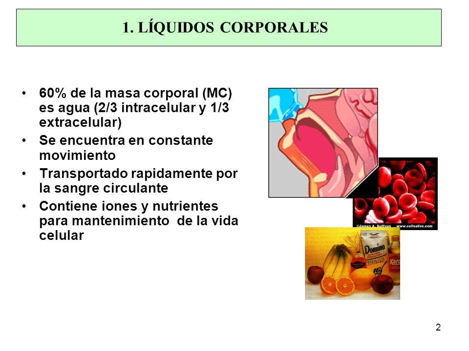 60% de la masa corporal (MC) es agua (2/3 intracelular y 1/3 extracelular) Se encuentra en constante movimiento Transportado rapidamente por la sangre circulante Contiene iones y nutrientes para mantenimiento de la vida celular 1.