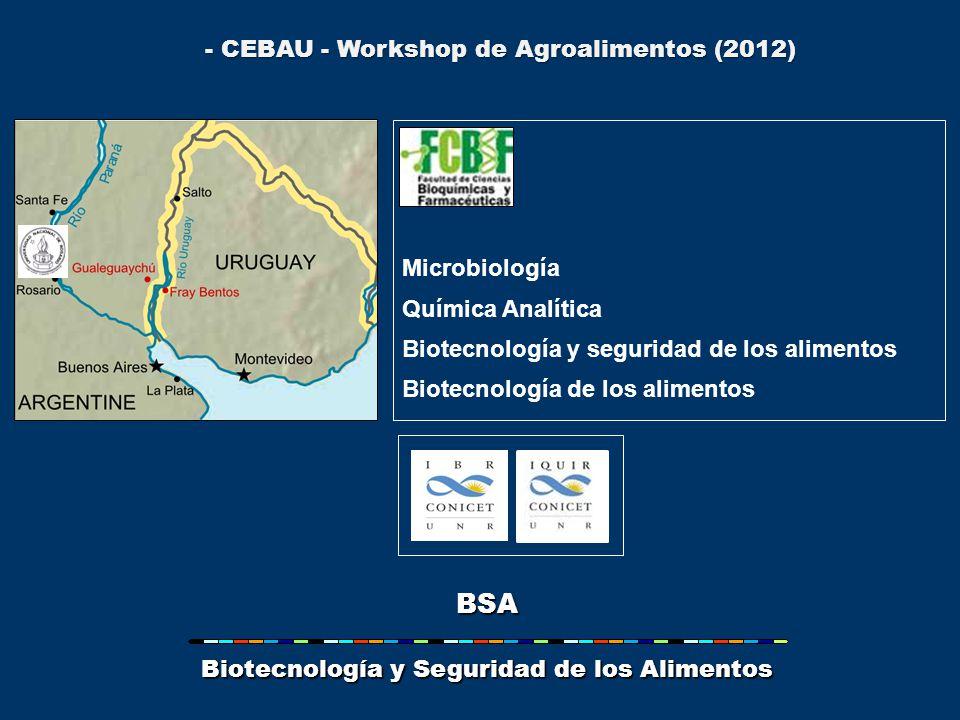 BSA Biotecnología y Seguridad de los Alimentos Microbiología Química Analítica Biotecnología y seguridad de los alimentos Biotecnología de los alimentos