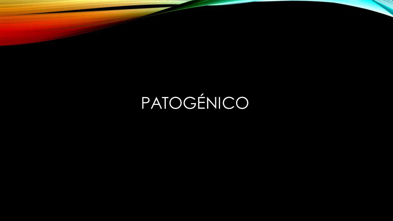 PATOGÉNICO