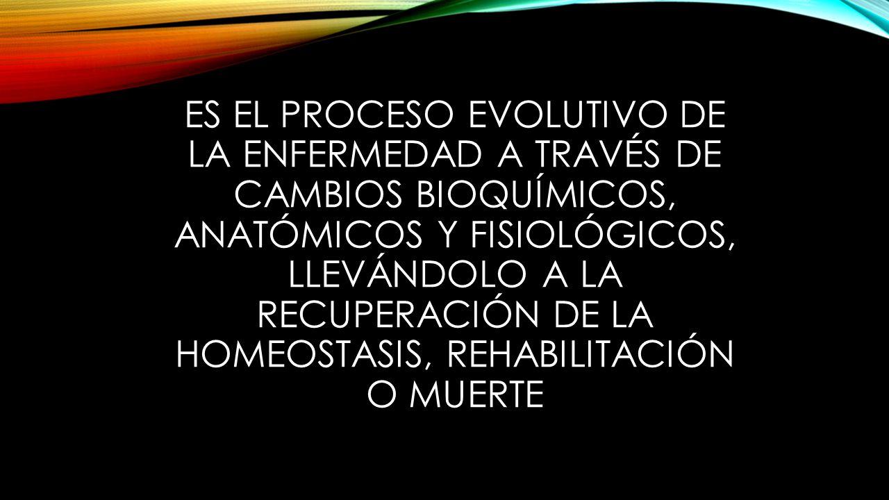 ES EL PROCESO EVOLUTIVO DE LA ENFERMEDAD A TRAVÉS DE CAMBIOS BIOQUÍMICOS, ANATÓMICOS Y FISIOLÓGICOS, LLEVÁNDOLO A LA RECUPERACIÓN DE LA HOMEOSTASIS, REHABILITACIÓN O MUERTE