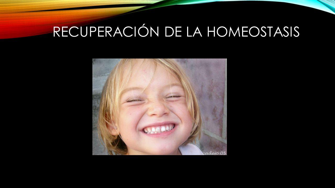 RECUPERACIÓN DE LA HOMEOSTASIS