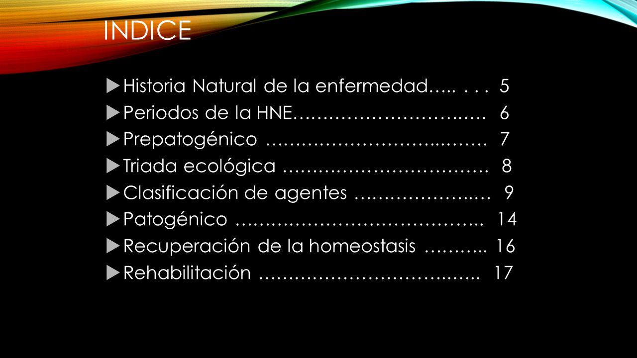 INDICE  Historia Natural de la enfermedad…..... 5  Periodos de la HNE……………………….….