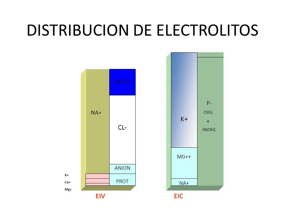 DISTRIBUCION DE ELECTROLITOS CL- ANION PROT K+ MG++ NA+ HCO3- P- ORG e INORG K+ Ca+ Mg+ EIVEIC