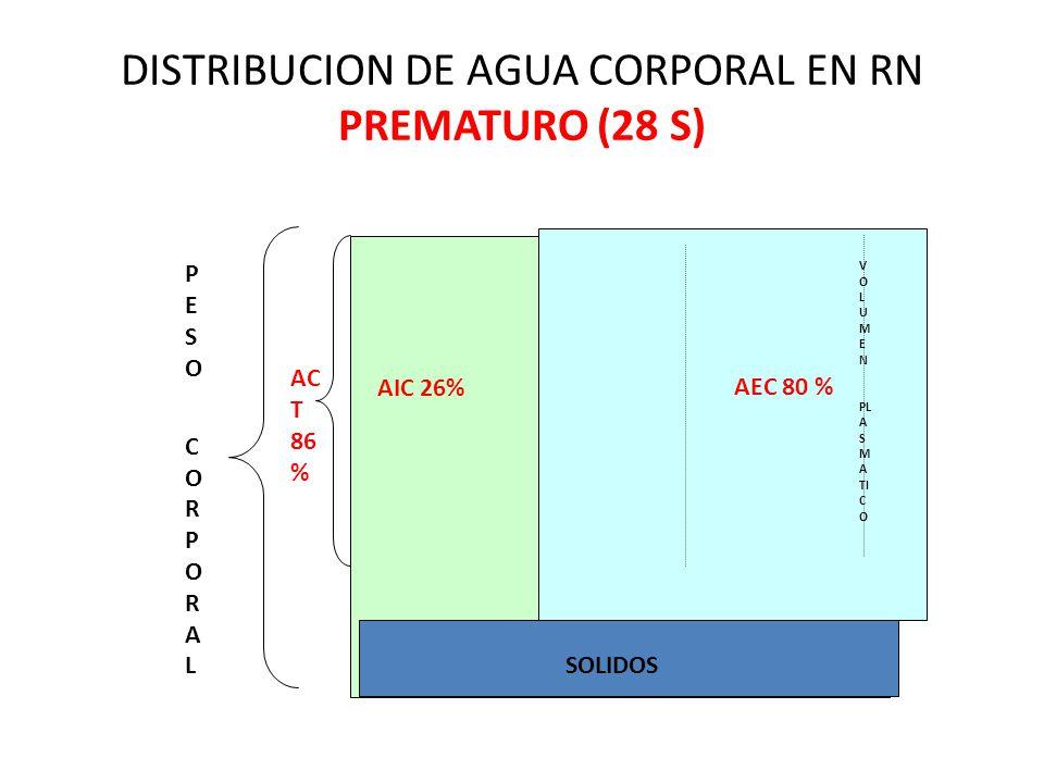 AIC 26% SOLIDOS AEC 80 % V O L U M E N PL A S M A TI C O AC T 86 % PESO CORPORALPESO CORPORAL DISTRIBUCION DE AGUA CORPORAL EN RN PREMATURO (28 S)
