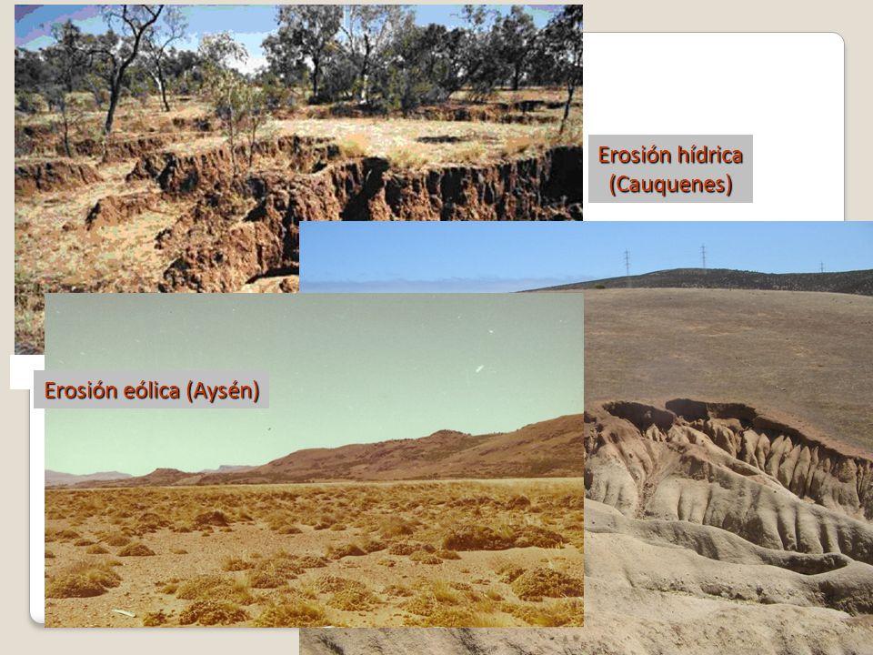 Erosión hídrica (Cauquenes) Erosión eólica (Aysén)