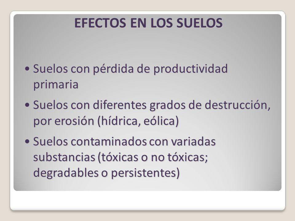EFECTOS EN LOS SUELOS Suelos con pérdida de productividad primariaSuelos con pérdida de productividad primaria Suelos con diferentes grados de destrucción, por erosión (hídrica, eólica)Suelos con diferentes grados de destrucción, por erosión (hídrica, eólica) Suelos contaminados con variadas substancias (tóxicas o no tóxicas; degradables o persistentes)Suelos contaminados con variadas substancias (tóxicas o no tóxicas; degradables o persistentes)