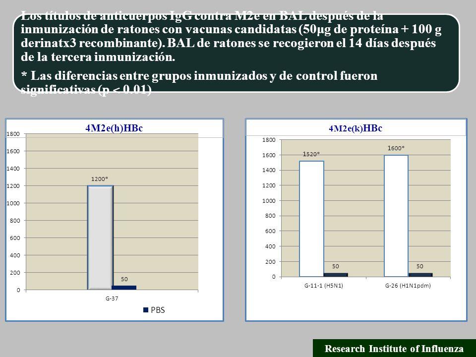 Los títulos de anticuerpos IgG contra M2e en BAL después de la inmunización de ratones con vacunas candidatas (50μg de proteína + 100 g derinatx3 recombinante).
