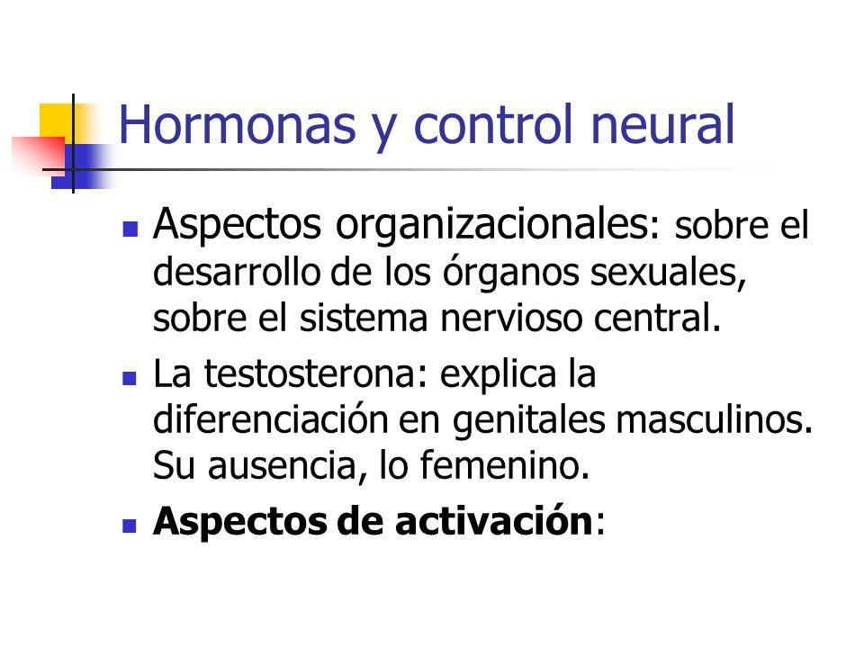 Hormonas y control neural Aspectos organizacionales : sobre el desarrollo de los órganos sexuales, sobre el sistema nervioso central.