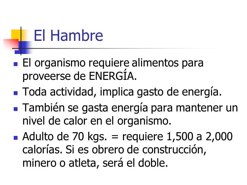El Hambre El organismo requiere alimentos para proveerse de ENERGÍA.