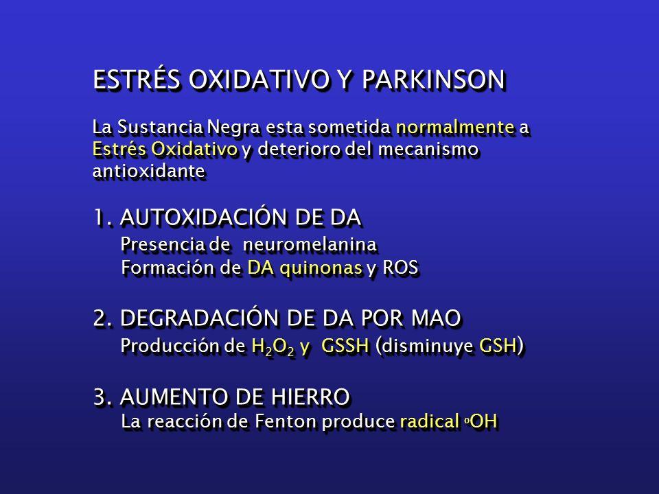 ESTRÉS OXIDATIVO Y PARKINSON La Sustancia Negra esta sometida normalmente a Estrés Oxidativo y deterioro del mecanismo antioxidante 1.