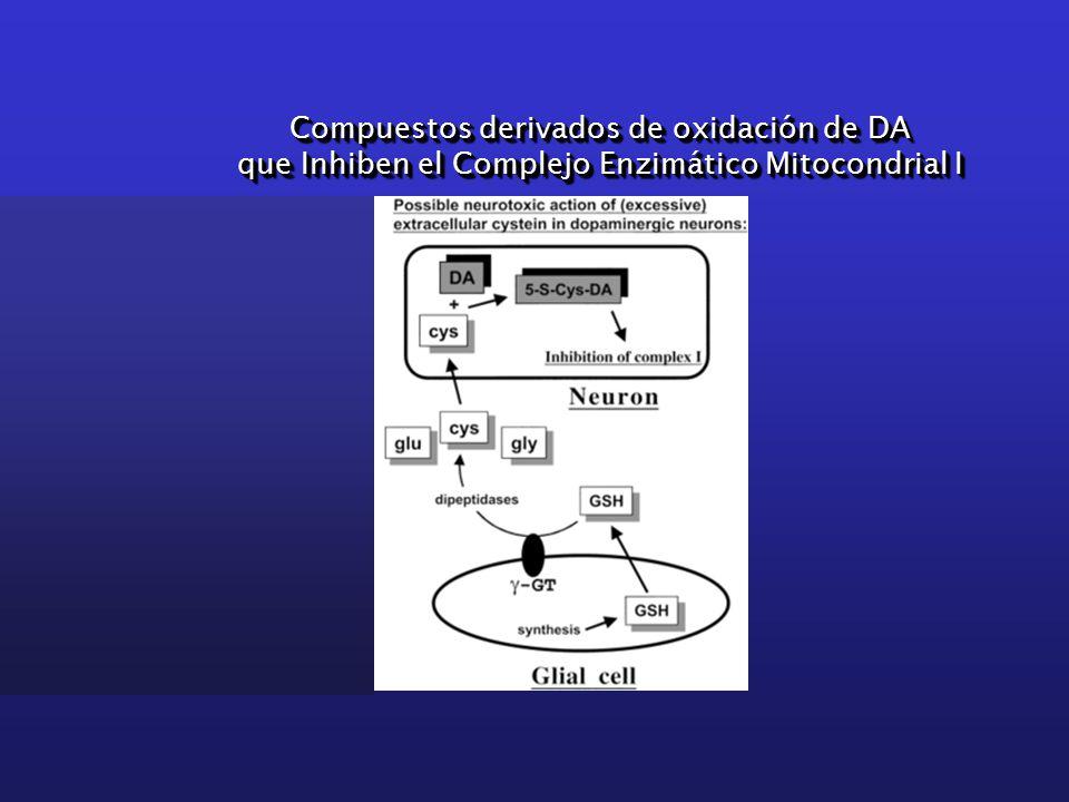 Compuestos derivados de oxidación de DA que Inhiben el Complejo Enzimático Mitocondrial I Compuestos derivados de oxidación de DA que Inhiben el Complejo Enzimático Mitocondrial I