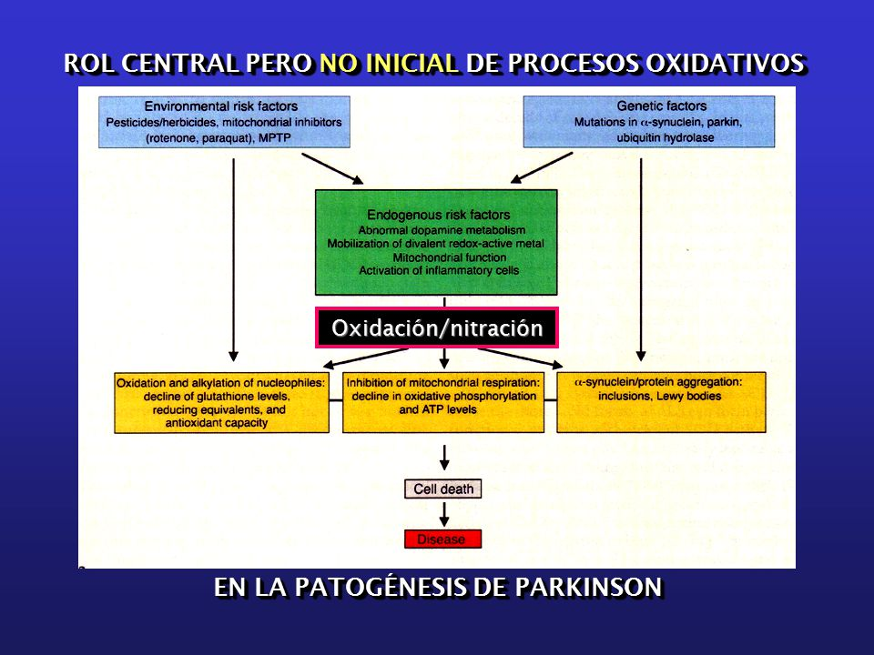 Oxidación/nitración ROL CENTRAL PERO NO INICIAL DE PROCESOS OXIDATIVOS EN LA PATOGÉNESIS DE PARKINSON