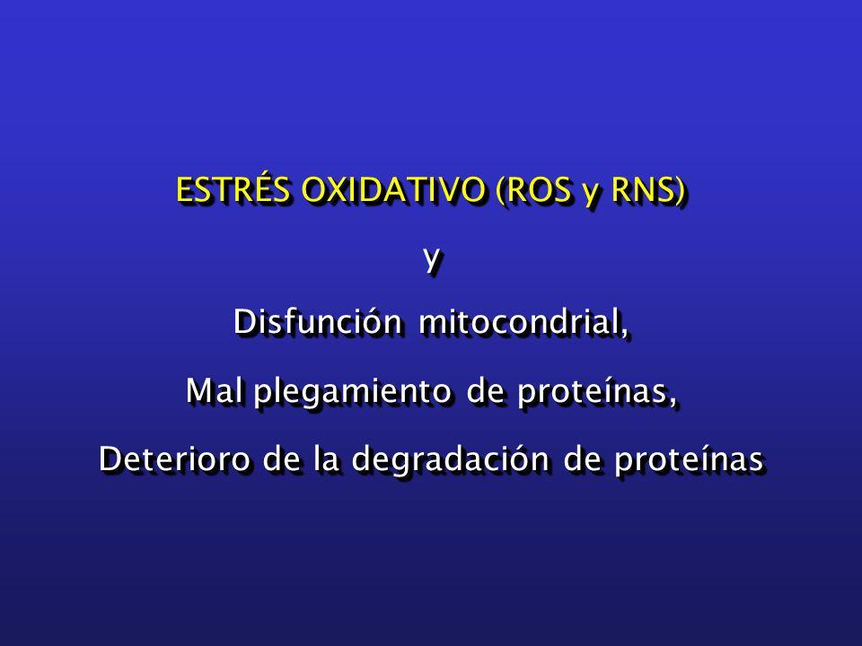 ESTRÉS OXIDATIVO (ROS y RNS) y Disfunción mitocondrial, Mal plegamiento de proteínas, Deterioro de la degradación de proteínas ESTRÉS OXIDATIVO (ROS y RNS) y Disfunción mitocondrial, Mal plegamiento de proteínas, Deterioro de la degradación de proteínas