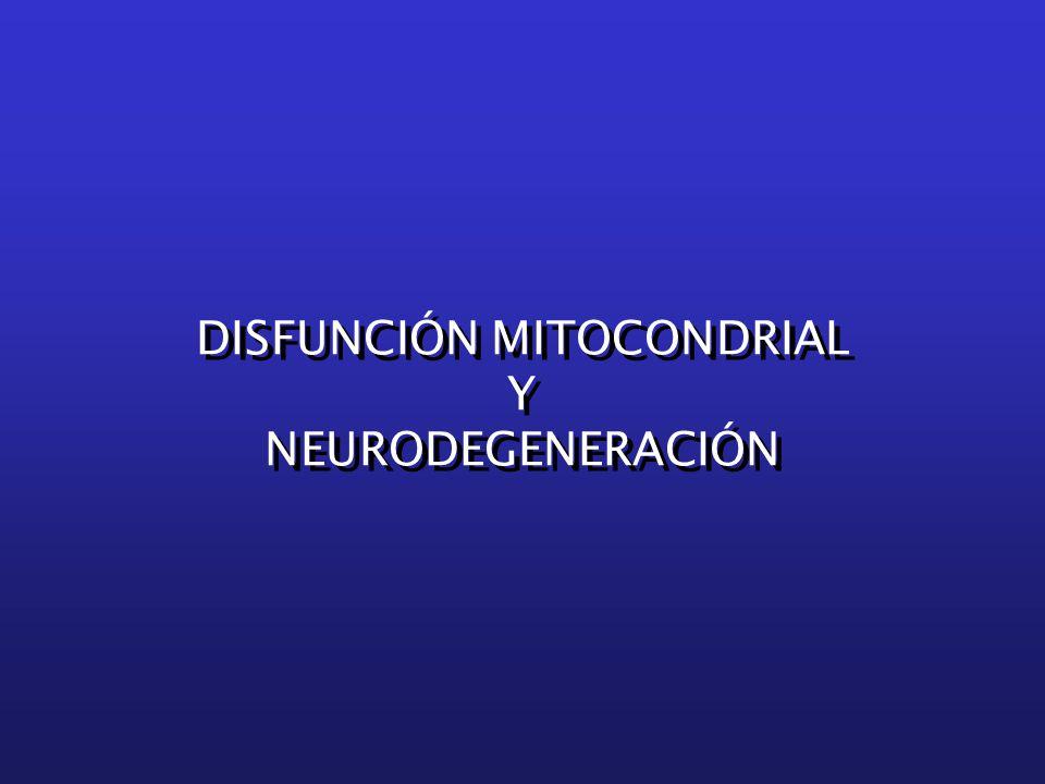 DISFUNCIÓN MITOCONDRIAL Y NEURODEGENERACIÓN DISFUNCIÓN MITOCONDRIAL Y NEURODEGENERACIÓN