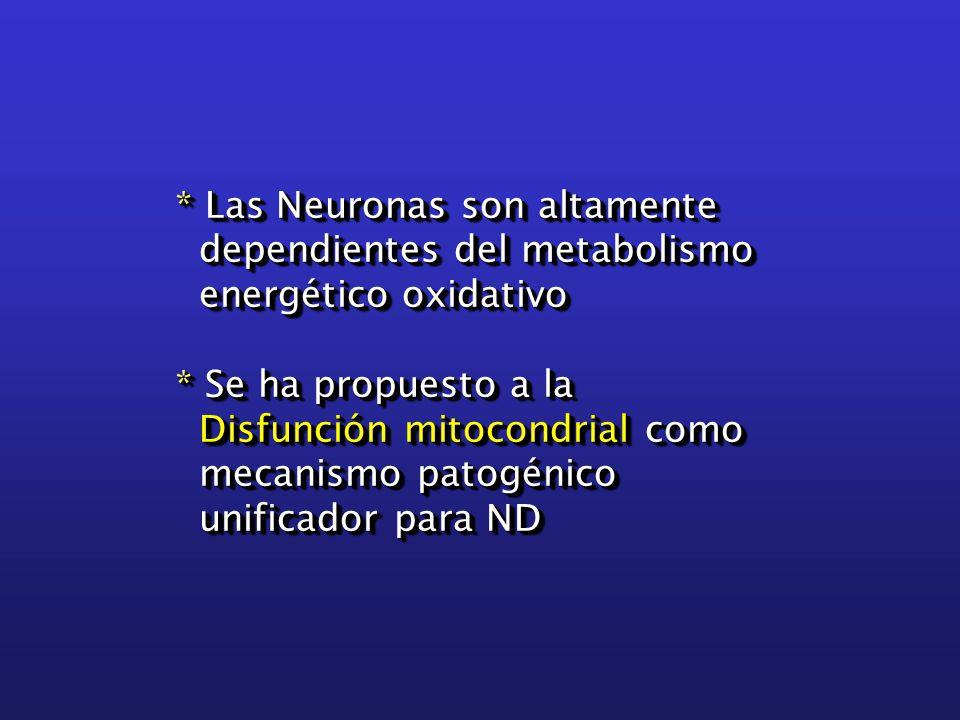 * Las Neuronas son altamente dependientes del metabolismo dependientes del metabolismo energético oxidativo energético oxidativo * Se ha propuesto a la Disfunción mitocondrial como Disfunción mitocondrial como mecanismo patogénico mecanismo patogénico unificador para ND unificador para ND * Las Neuronas son altamente dependientes del metabolismo dependientes del metabolismo energético oxidativo energético oxidativo * Se ha propuesto a la Disfunción mitocondrial como Disfunción mitocondrial como mecanismo patogénico mecanismo patogénico unificador para ND unificador para ND