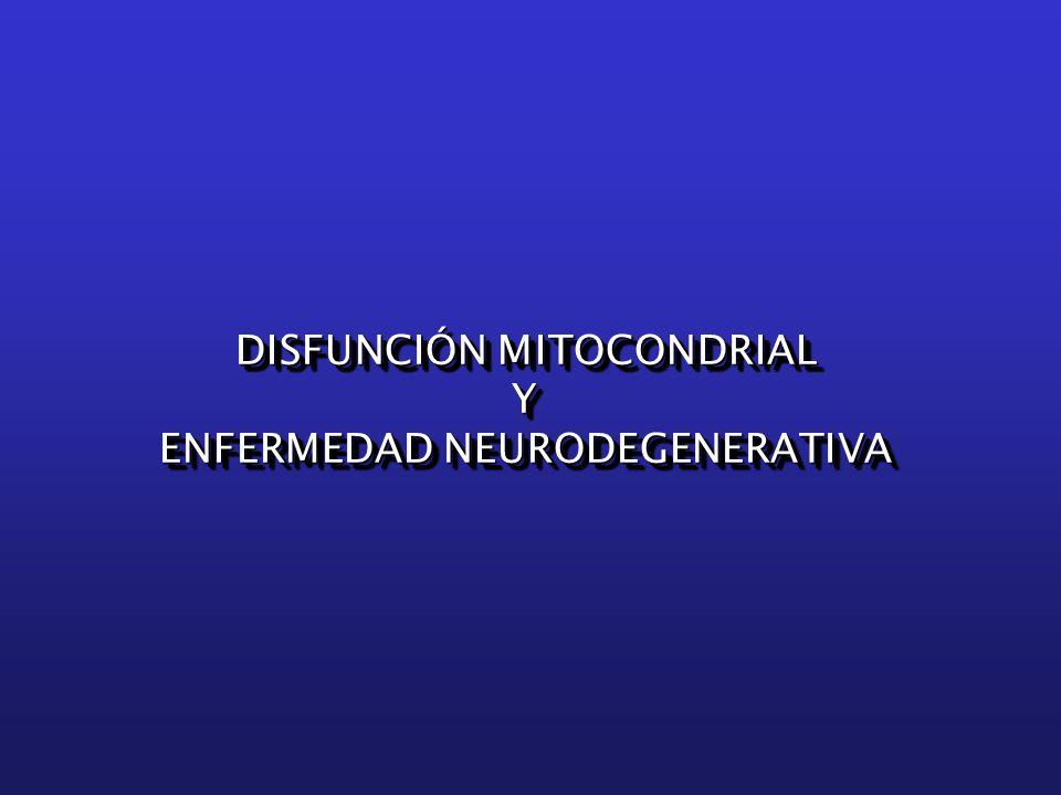DISFUNCIÓN MITOCONDRIAL Y ENFERMEDAD NEURODEGENERATIVA DISFUNCIÓN MITOCONDRIAL Y ENFERMEDAD NEURODEGENERATIVA