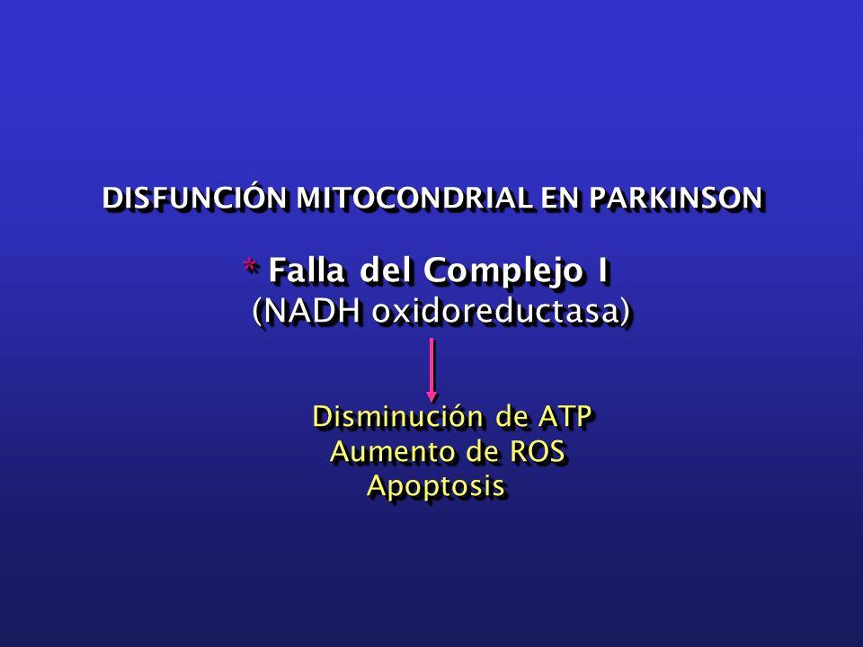DISFUNCIÓN MITOCONDRIAL EN PARKINSON DISFUNCIÓN MITOCONDRIAL EN PARKINSON * Falla del Complejo I * Falla del Complejo I (NADH oxidoreductasa) (NADH oxidoreductasa) Disminución de ATP Disminución de ATP Aumento de ROS Aumento de ROS Apoptosis Apoptosis DISFUNCIÓN MITOCONDRIAL EN PARKINSON DISFUNCIÓN MITOCONDRIAL EN PARKINSON * Falla del Complejo I * Falla del Complejo I (NADH oxidoreductasa) (NADH oxidoreductasa) Disminución de ATP Disminución de ATP Aumento de ROS Aumento de ROS Apoptosis Apoptosis