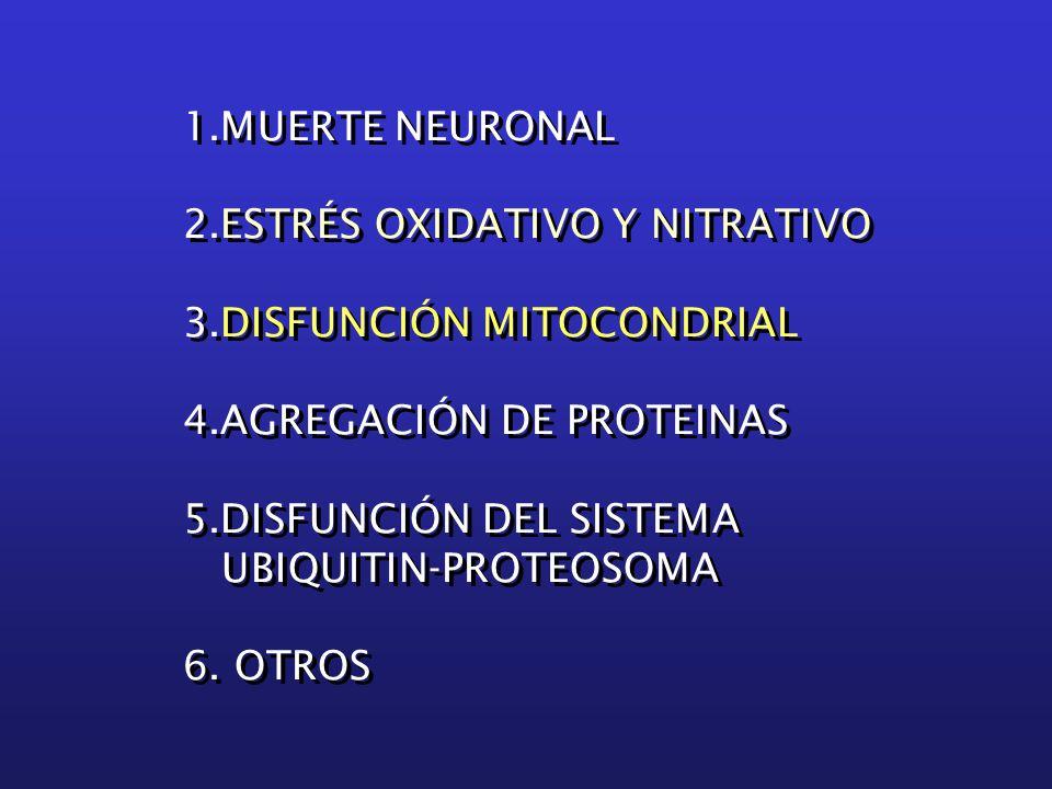 1.MUERTE NEURONAL 2.ESTRÉS OXIDATIVO Y NITRATIVO 3.DISFUNCIÓN MITOCONDRIAL 4.AGREGACIÓN DE PROTEINAS 5.DISFUNCIÓN DEL SISTEMA UBIQUITIN-PROTEOSOMA 6.