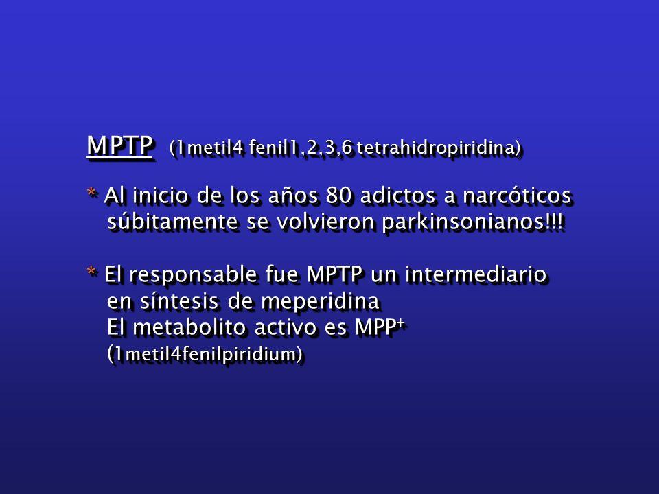 MPTP (1metil4 fenil1,2,3,6 tetrahidropiridina) * Al inicio de los años 80 adictos a narcóticos súbitamente se volvieron parkinsonianos!!.