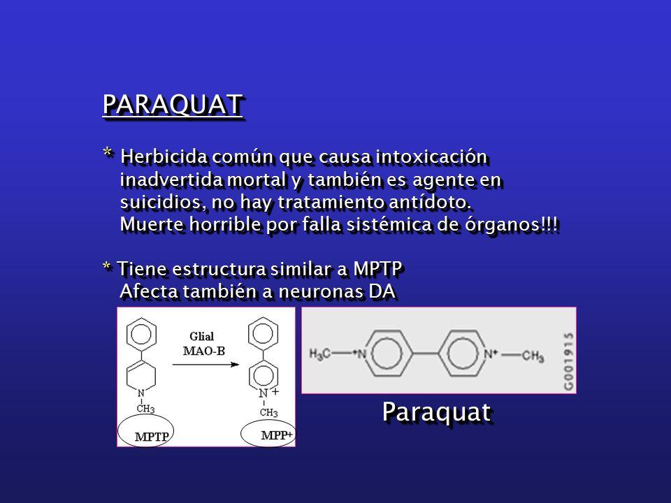 PARAQUAT * Herbicida común que causa intoxicación inadvertida mortal y también es agente en inadvertida mortal y también es agente en suicidios, no hay tratamiento antídoto.