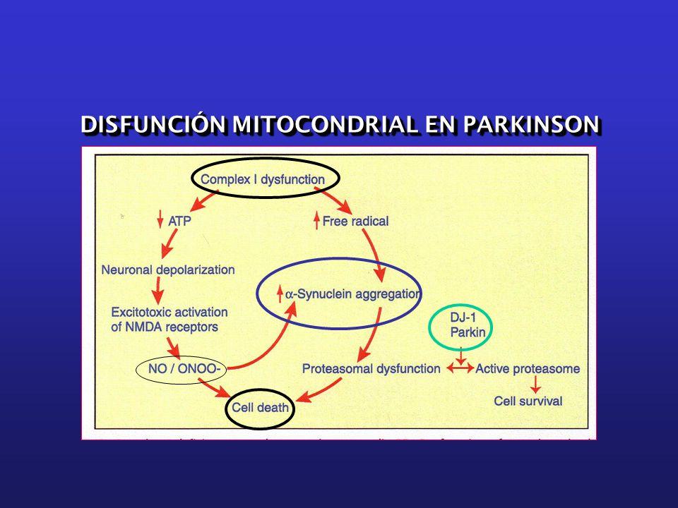 DISFUNCIÓN MITOCONDRIAL EN PARKINSON
