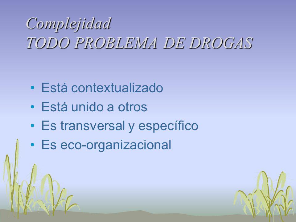 Complejidad TODO PROBLEMA DE DROGAS Está contextualizado Está unido a otros Es transversal y específico Es eco-organizacional