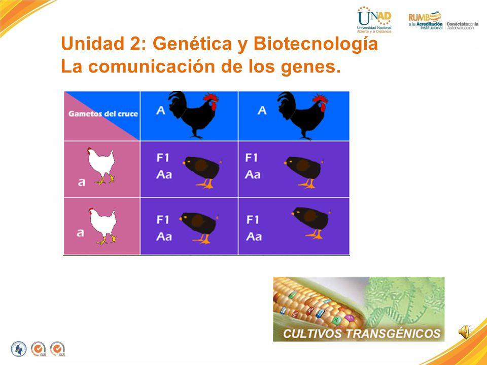 Unidad 1: Los Seres Vivos Funcionamiento y comunicación vital de los organismos.