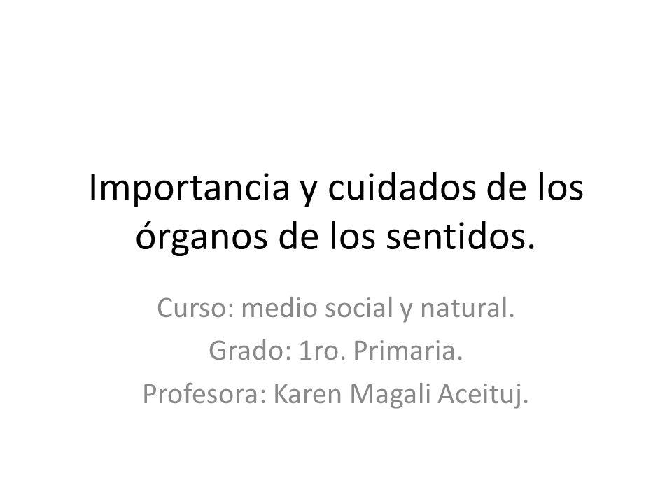 Importancia y cuidados de los órganos de los sentidos. Curso: medio social y natural. Grado: 1ro. Primaria. Profesora: Karen Magali Aceituj.