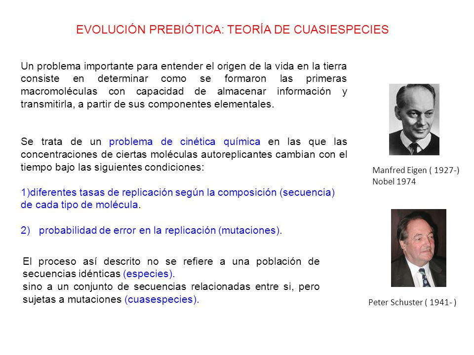 Manfred Eigen ( 1927-) Nobel 1974 Peter Schuster ( 1941- ) EVOLUCIÓN PREBIÓTICA: TEORÍA DE CUASIESPECIES Un problema importante para entender el origen de la vida en la tierra consiste en determinar como se formaron las primeras macromoléculas con capacidad de almacenar información y transmitirla, a partir de sus componentes elementales.