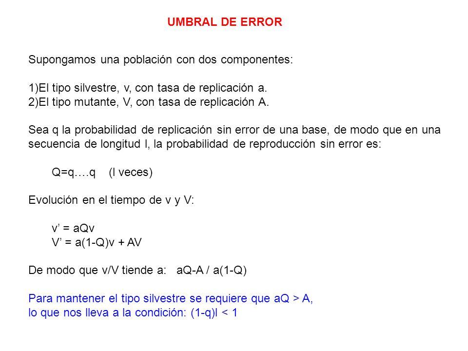 UMBRAL DE ERROR Supongamos una población con dos componentes: 1)El tipo silvestre, v, con tasa de replicación a.