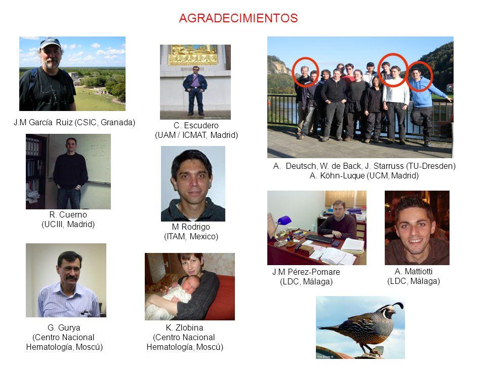 AGRADECIMIENTOS J.M García Ruiz (CSIC, Granada) C.