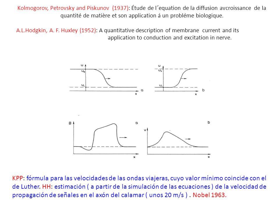 Kolmogorov, Petrovsky and Piskunov (1937): Étude de l´equation de la diffusion avcroissance de la quantité de matière et son application á un probléme biologique.