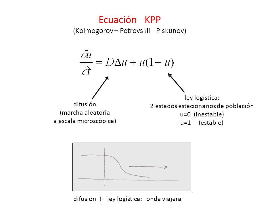 Ecuación KPP (Kolmogorov – Petrovskii - Piskunov) difusión (marcha aleatoria a escala microscópica) ley logística: 2 estados estacionarios de población u=0 (inestable) u=1 (estable) difusión + ley logística: onda viajera