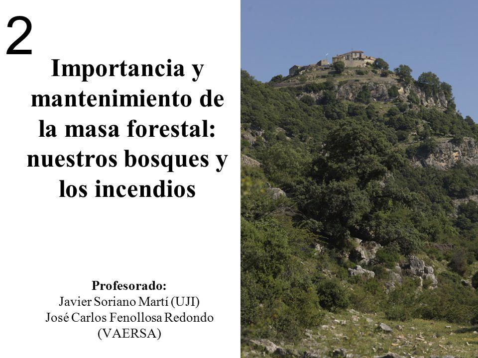 2 Importancia y mantenimiento de la masa forestal: nuestros bosques y los incendios Profesorado: Javier Soriano Martí (UJI) José Carlos Fenollosa Redondo (VAERSA)