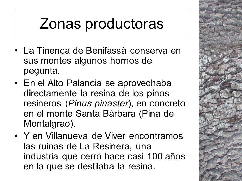 Zonas productoras La Tinença de Benifassà conserva en sus montes algunos hornos de pegunta.