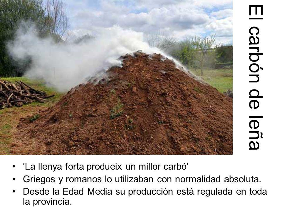 'La llenya forta produeix un millor carbó' Griegos y romanos lo utilizaban con normalidad absoluta.