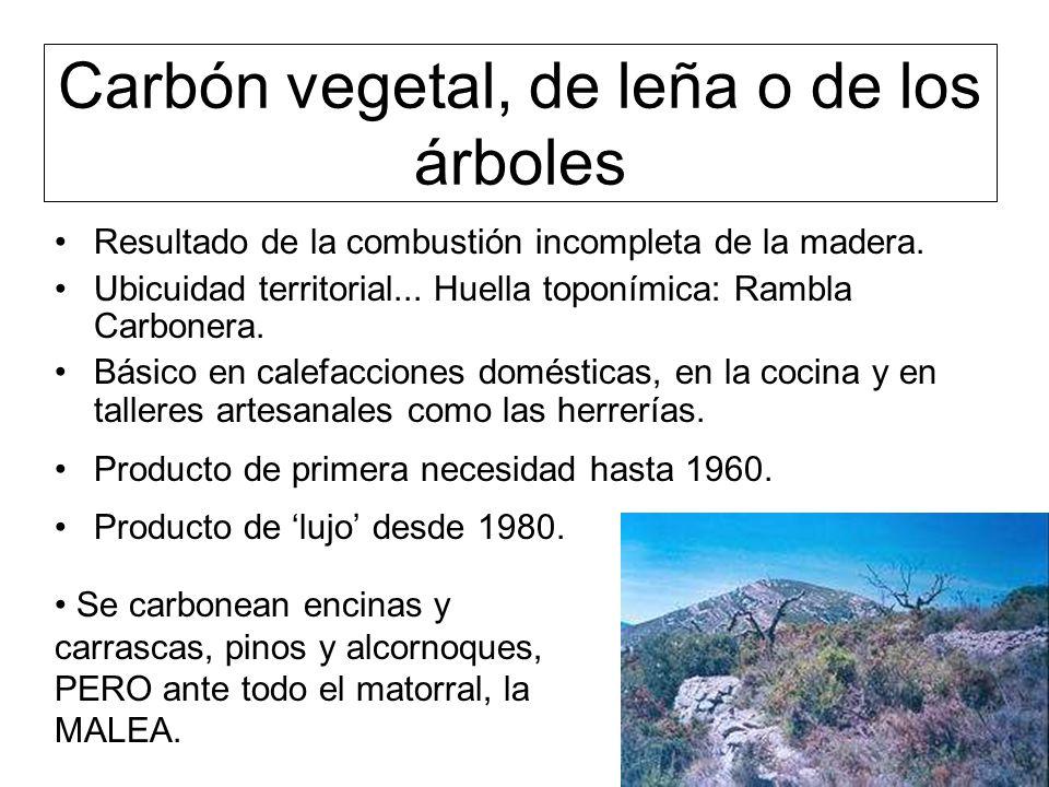Carbón vegetal, de leña o de los árboles Resultado de la combustión incompleta de la madera.