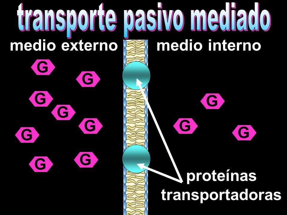 medio externomedio interno G G G G G G G G G G G proteínas transportadoras