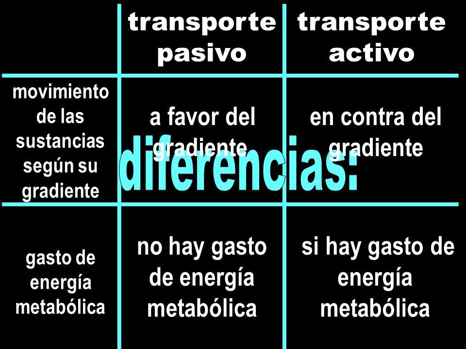 transporte pasivo transporte activo movimiento de las sustancias según su gradiente gasto de energía metabólica en contra del gradiente a favor del gradiente no hay gasto de energía metabólica si hay gasto de energía metabólica