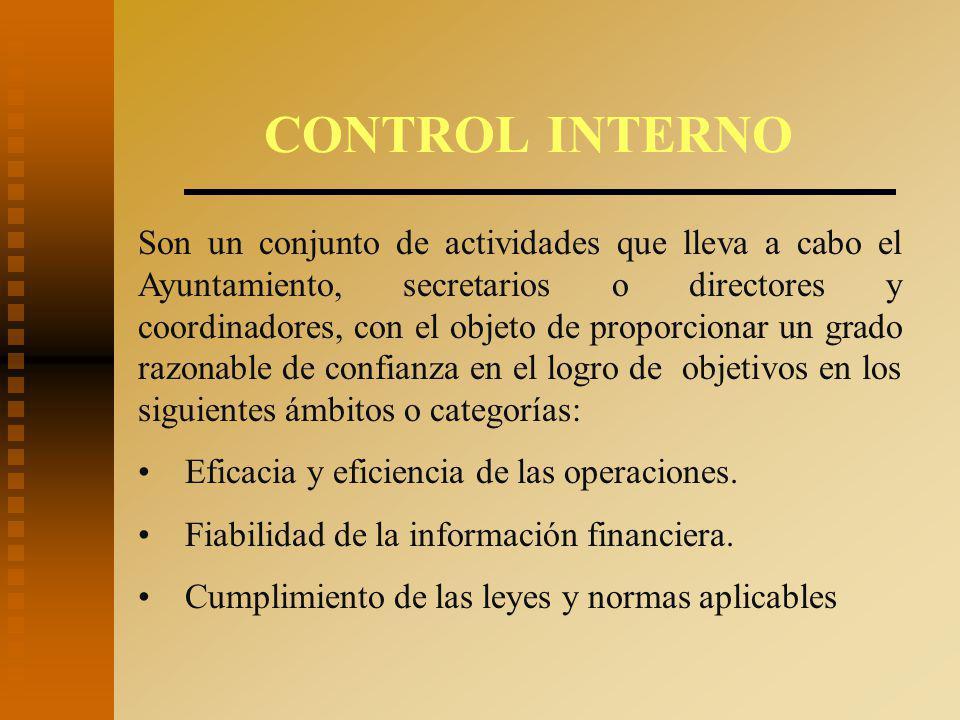 CONTROL INTERNO Son un conjunto de actividades que lleva a cabo el Ayuntamiento, secretarios o directores y coordinadores, con el objeto de proporcionar un grado razonable de confianza en el logro de objetivos en los siguientes ámbitos o categorías: Eficacia y eficiencia de las operaciones.