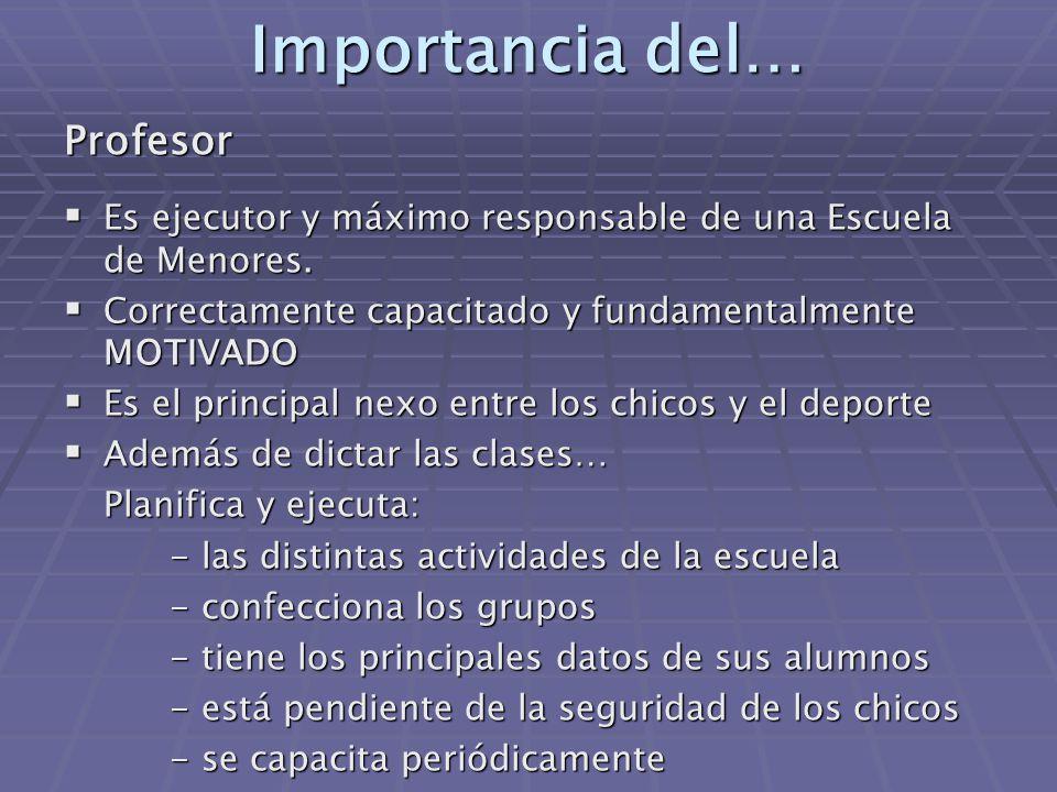 Importancia del… Profesor  Es ejecutor y máximo responsable de una Escuela de Menores.