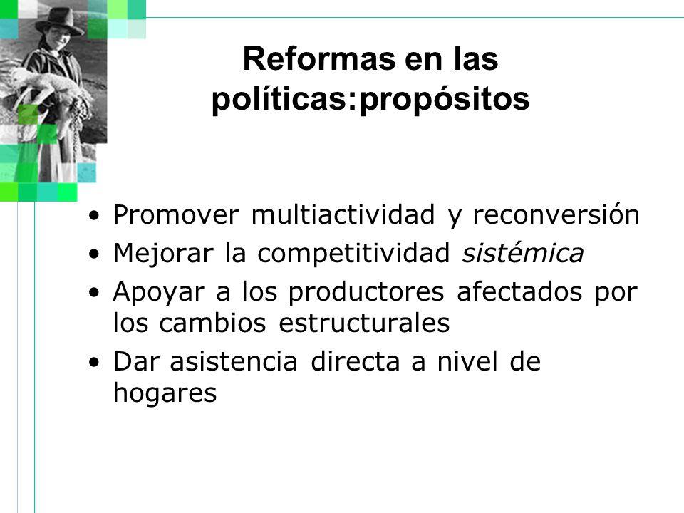 Reformas en las políticas:propósitos Promover multiactividad y reconversión Mejorar la competitividad sistémica Apoyar a los productores afectados por los cambios estructurales Dar asistencia directa a nivel de hogares