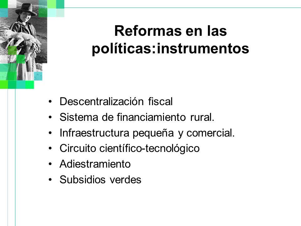 Reformas en las políticas:instrumentos Descentralización fiscal Sistema de financiamiento rural.